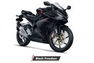 Niat Modifikasi Honda CBR 250RR? Mending Pilih type Ini saja Bro!