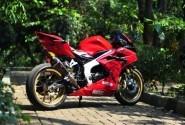 Modifikasi Honda CBR Pengagum Spider Man